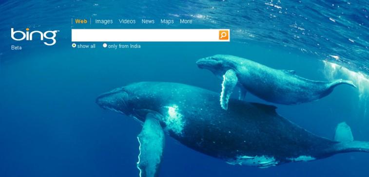 Bing wordt steeds vaker gebruikt als zoekmachine in plaats van Google