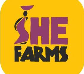 Shefarms onlina marketing advies en wordpress website bouwen en ontwerpen